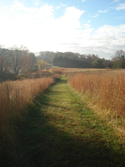 WALKING THE PATHS OF LIFE AS THE BELOVED - A Weekend Retreat @ Dayspring Retreat Center