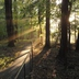 September_morning_path_to_lodge